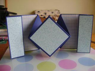 Fancy fold card 008