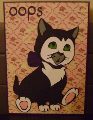 Cat oops 18-01-2011 17-44-02